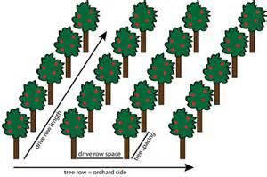fruit tree spacing chart aipmtp sprayer technology use