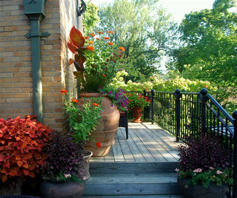 home gardening ideas new home designs latest beautiful home gardens designs