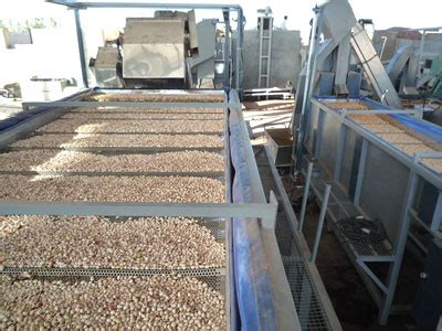 steel mills set to roar after curbs end cisa exxir gmbh hamburg pistachios in shell products