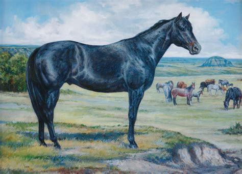 blue horses for sale in animal detailed listing