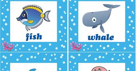 ocean animal flashcards deep in the ocean deep in the sea song for kids
