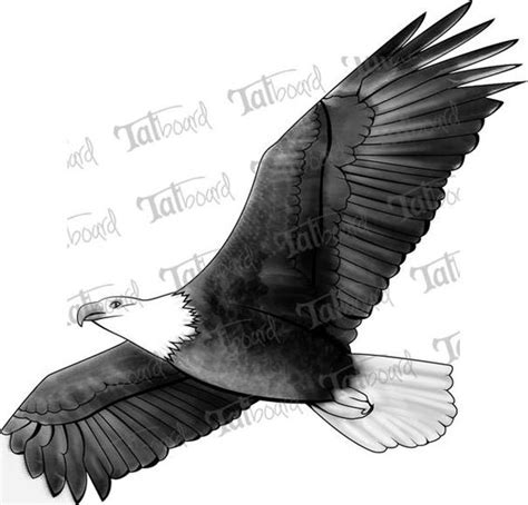 flying eagle tattoo designs 110 best flying eagle tattoos designs with meanings