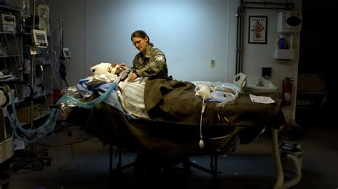 lifting restrictions after c section lifting restrictions on nurses can help the va deliver