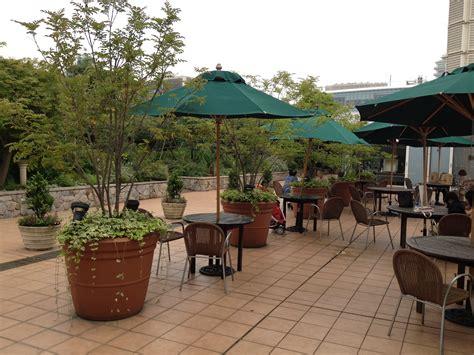 rooftop landscaping how to build rooftop garden ideas garden