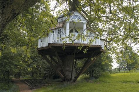 real life treehouse real tree house design of your house its good idea for