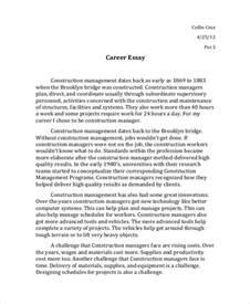 Career Plan Essay Sle by 6 Essay Exles Sles