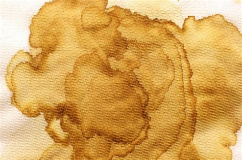 coffee stained wallpaper 30 exles of high resolution stained paper texture