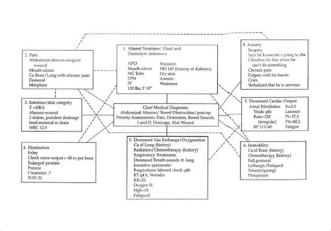 10 Sle Concept Map Templates Sle Templates Free Templates For Care Maps