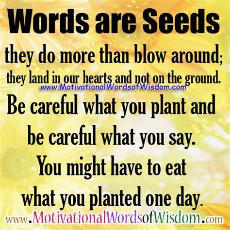 Words Of Wisdom Motivational Words Of Wisdom