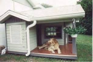 House Dogs Pics Photos Large Indoor Dog House