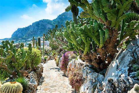 giardino botanico montecarlo il giardino esotico monte carlo montecarlo