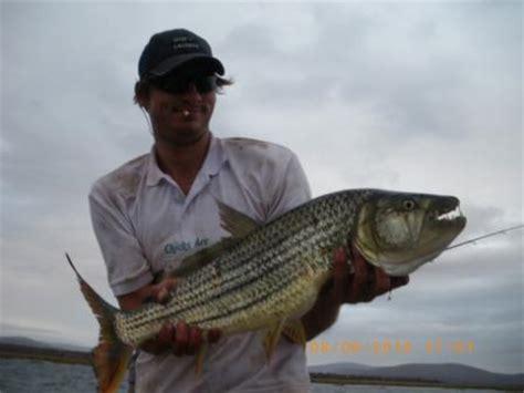 jozini tiger fishing boat hire jozini tigerfishing