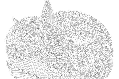 millie marottas animal kingdom 184994167x 80 animal kingdom coloring book adventure millie