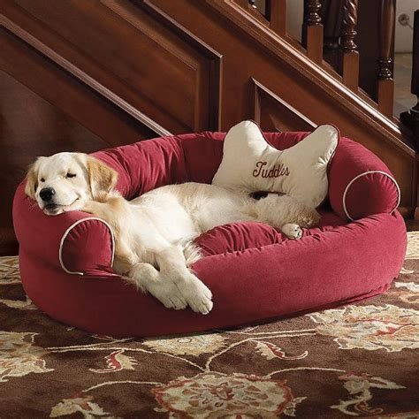 comfy couch dog bed comfy couch pet bed things i love pinterest