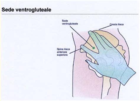 iniezione intramuscolare sedi infermiere clinico iniezioni intramuscolari