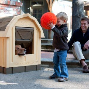 asl insulated dog house asl solutions dog palace insulated dog house review doggy savvy