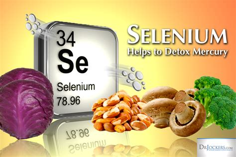 Mercury Detox Diet by How Selenium Helps To Detoxify Mercury