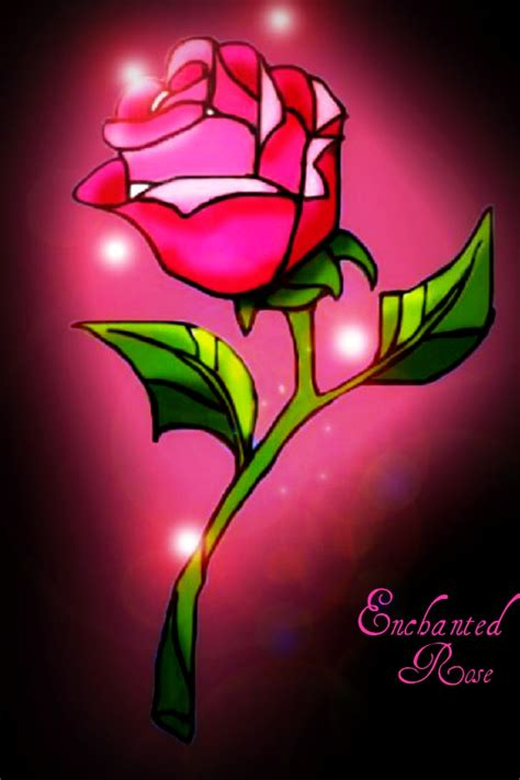 rose in beauty and the beast beauty and the beast rose enchanted rose by everlasting