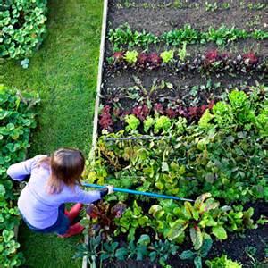 Gardening Advice Injury Proof Your Gardening Health