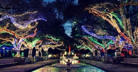 la zoo lights hours houston zoo lights 2018 dates hours discounts and more