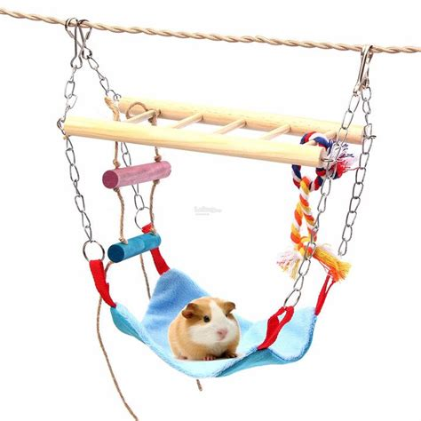 budgie swings swing cage hanging hammock pet bird end 1 31 2018 9 15 am