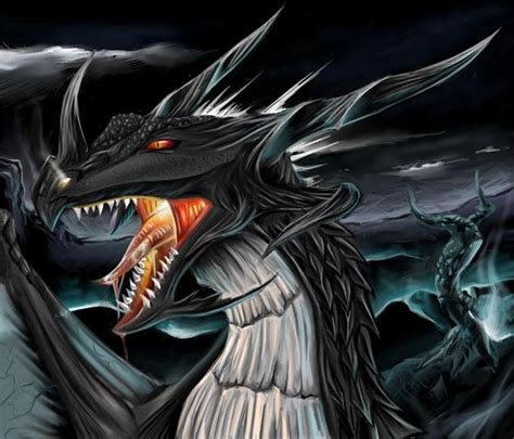 dark dragon griffins and dragons images dark dragon wallpaper