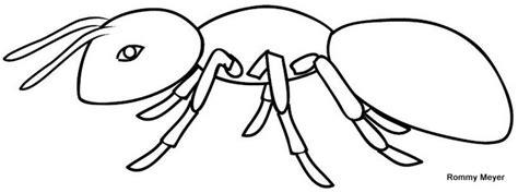 dibujos infantiles para colorear de hormigas hormiga para colorear