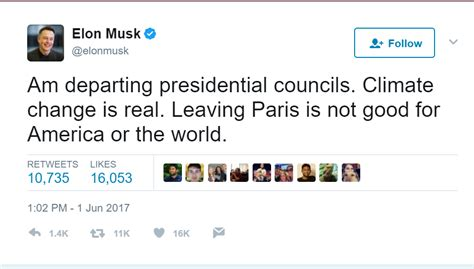 elon musk government overview for ssbozzelli