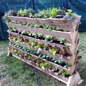 Vertical vegetable gardening project garden amp flowers pinterest