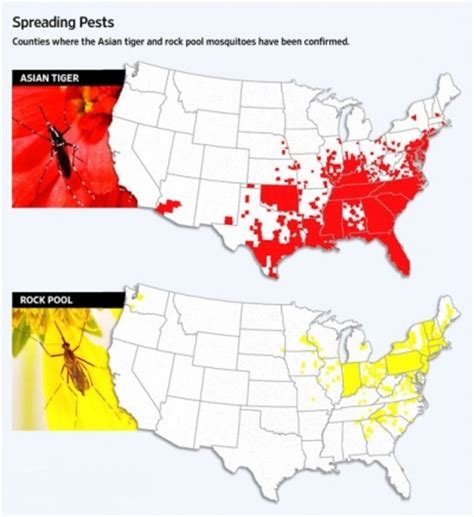mosquito map usa new mosquito species spreading in the united states