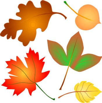 printable clipart for leaves fall leaves clipart clipart panda free clipart images