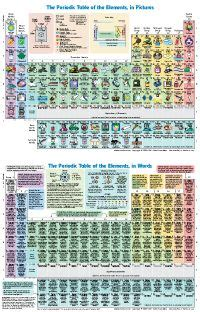 printable periodic table for elementary students the 111 best images about high school printables on
