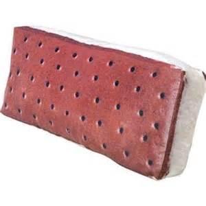 sandwich pillow gift shop from skymall
