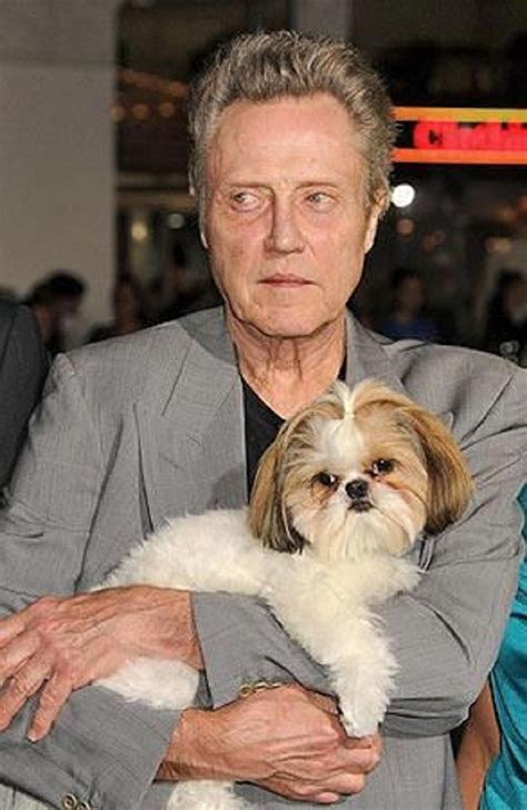 Christopher Walken Closet by Chris Walken Bonny The Shihtzu Seven Psychopaths 2012