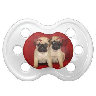 pugs for dummies pug dummies baby soothers zazzle co uk