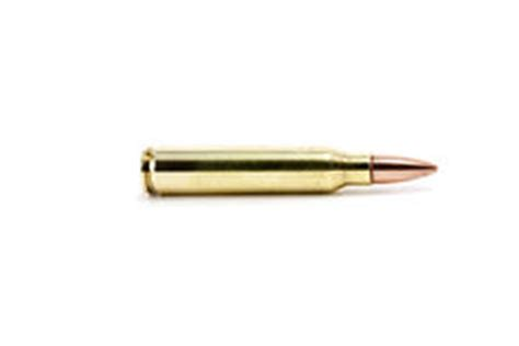 single bullet stock images image 26217884