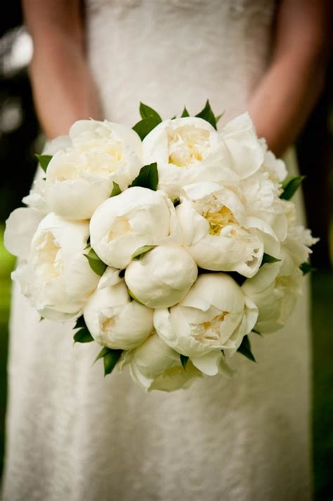 peonies bouquet discover and save creative ideas