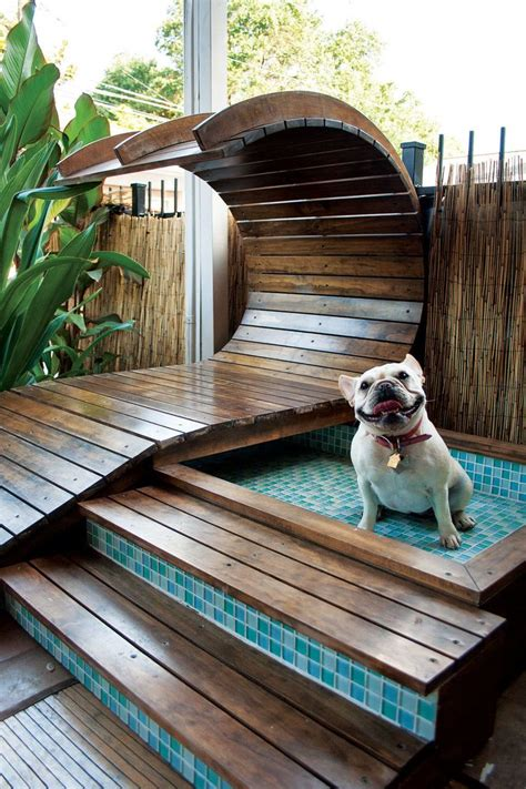 dog house with pool best 25 luxury dog house ideas on pinterest outdoor dog houses diy dog kennel and