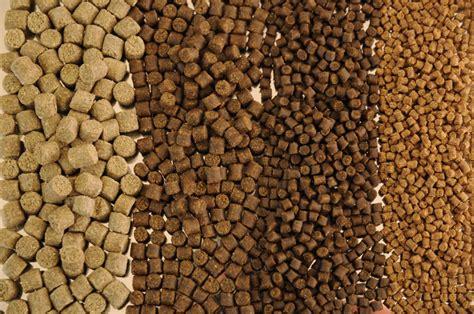 Fish feed pellet making machine agrolifebenefits