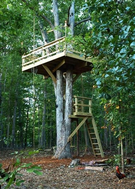 backyard treehouse ideas 30 tree perch and lookout deck ideas adding fun diy