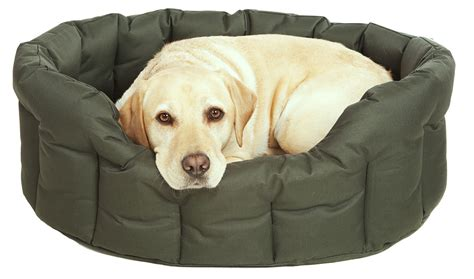 waterproof pet bed p l country dog heavy duty waterproof dog beds