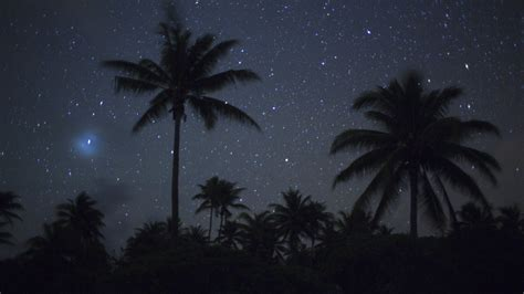landscapes stars french polynesia palm trees wallpaper