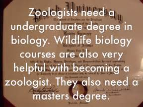 requirements to be a zoologist detective and criminal investigator cover letter
