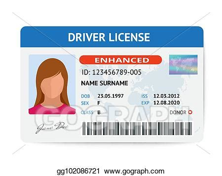 drive template card vector illustration flat driver license plastic