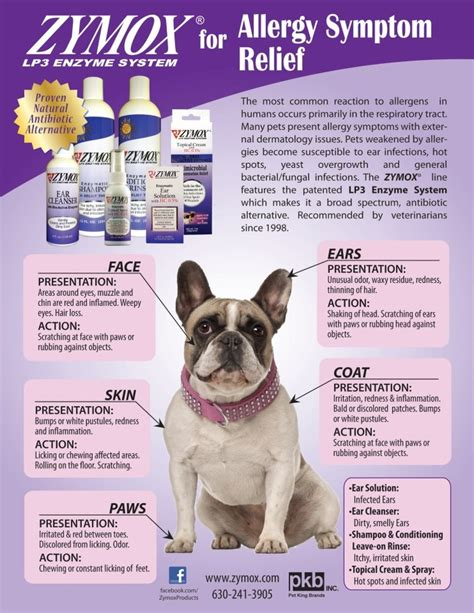 zymox for dogs zymox for pet allergy symptom relief dogs cats pin it puppy