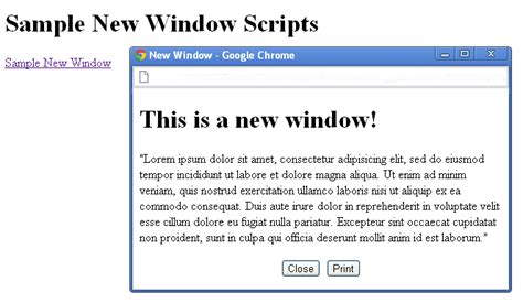 javascript tutorial open new window three javascript snippets for your web design toolkit