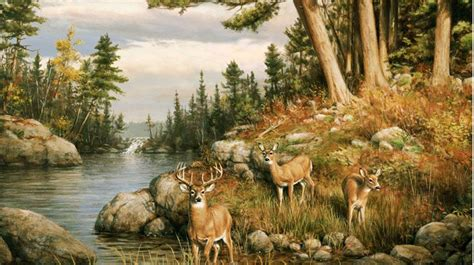 Wildlife Wall Mural wall mural deer wall murals are all good to go on for
