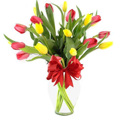 imagenes tulipanes naturales ver arreglos florales abajo pueden ver ejemplos de