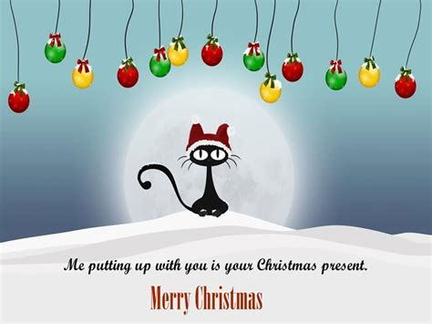 merry christmas funny quotes  images daily sms collection