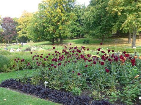 Britzer Garten Programm 2017 by Minig 228 Rtchen 2017 Teil 4 Herbst Page 3 Mein